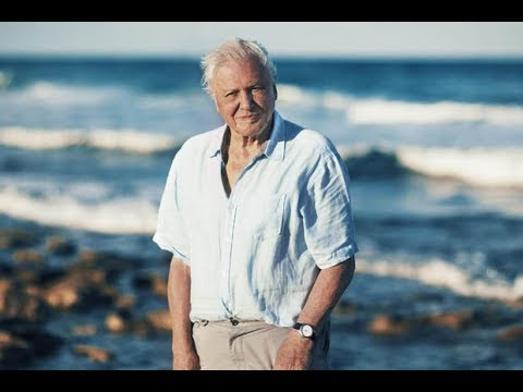 Telly legend Sir David Attenborough's Blue Planet II is most-viewed life form