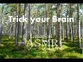 Download [3D ASMR] Amazing Forest Sounds (Binaural ASMR) - 1 Hour  - Relaxing / Studying MP3 song and Music Video
