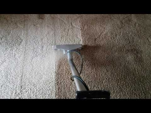 Bama's Best Carpet Cleaning Mobile AL