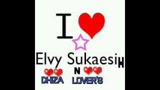 Gambar cover Elvy Sukaesih ~ TAK MUNGKIN