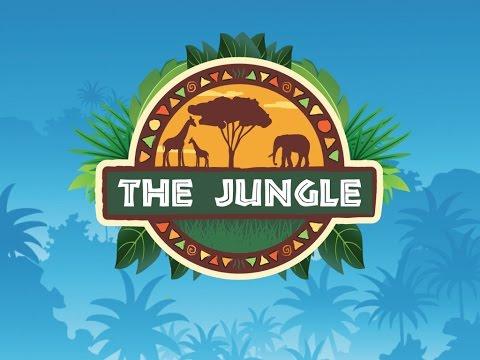 The Jungle 2016 Recap