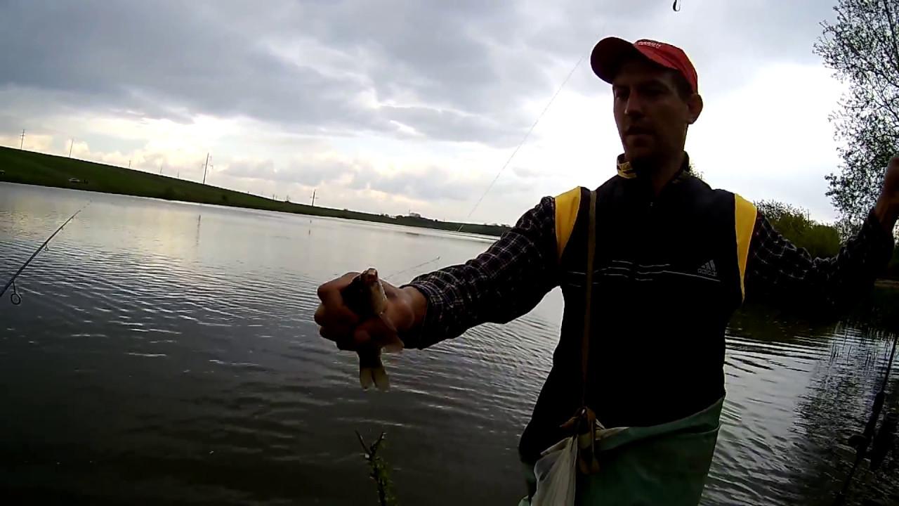 Download — Рыбалка на карася и сома Живые раки и крабы Макс ловит рыбу в бассейне с жабами