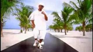 Ludacris Feat Nate Dogg - Area Code (Dj Cripster Refix)