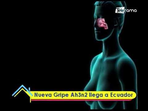 Nueva Gripe Ah3n2 llega a Ecuador
