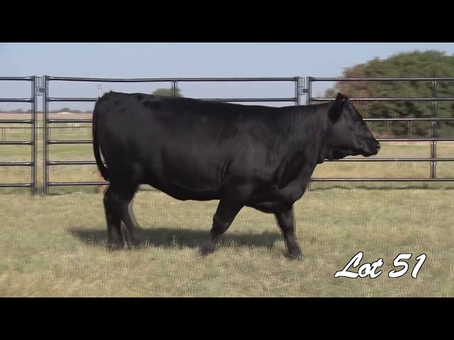Pollard Farms Lot 51