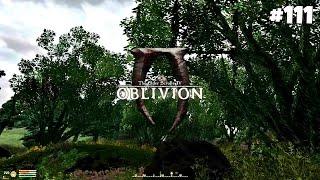 The Elder Scrolls IV: Oblivion GBRs Edition - Прохождение #111: От святилища к святилищу