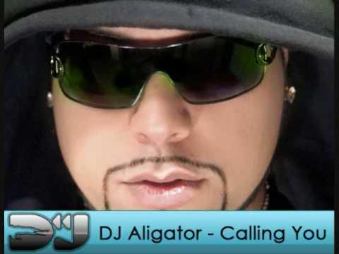 DJ Aligator - Calling You ( Radio Edit ) [NEW]