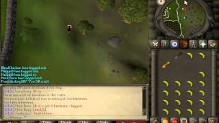 RuneScape - 2007 - Pirate's Treasure