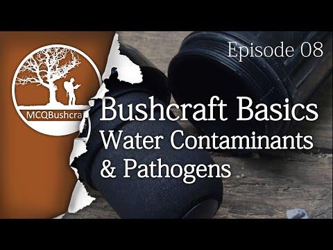 Bushcraft Basics Ep08: Water Contaminants & Pathogens