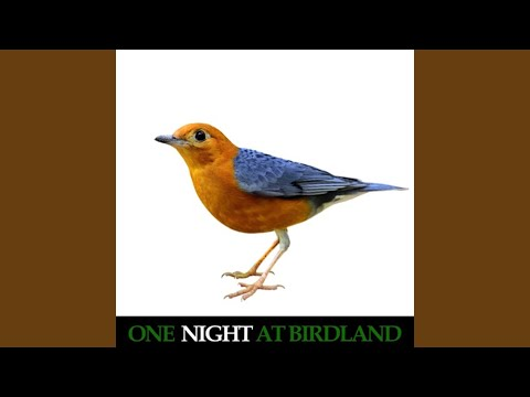 Ornithology (Live) mp3