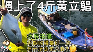 #191 I met a Snubnose Pompano in this journey | [Hong Kong HK Fishing : BoatGame] {Voice Over + CC}