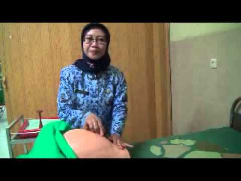 manual palpations in labor Aims of abdominal palpation 4 preparation 5 position for the procedure 6 inspection 7 auscultation of the fetal heart 8 abdominal palpation during the antenatal and labour period 9 postnatal examination 10 staffing and training 11 supervisor of midwives 12 infection prevention 13 audit and.