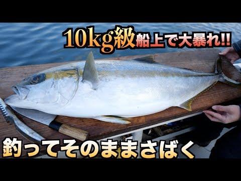 大暴れ!!10kgの巨大魚を船でさばいたら日大タックルばりの攻撃されたwww