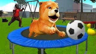 СИМУЛЯТОР СОБАКИ 🐶🐶🐶 #2 ЩЕНОК  мульт-игра про щенка развлекательное видео