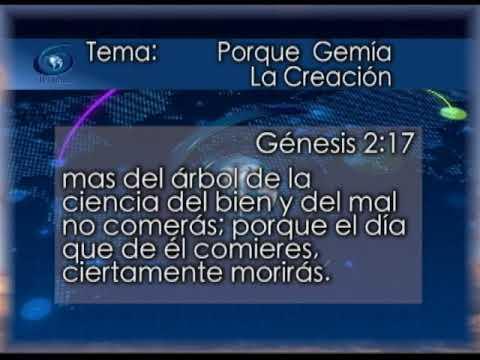 Joya De Gracia #695 Dios quería que su simiente gobernara con cuerpos inmortales