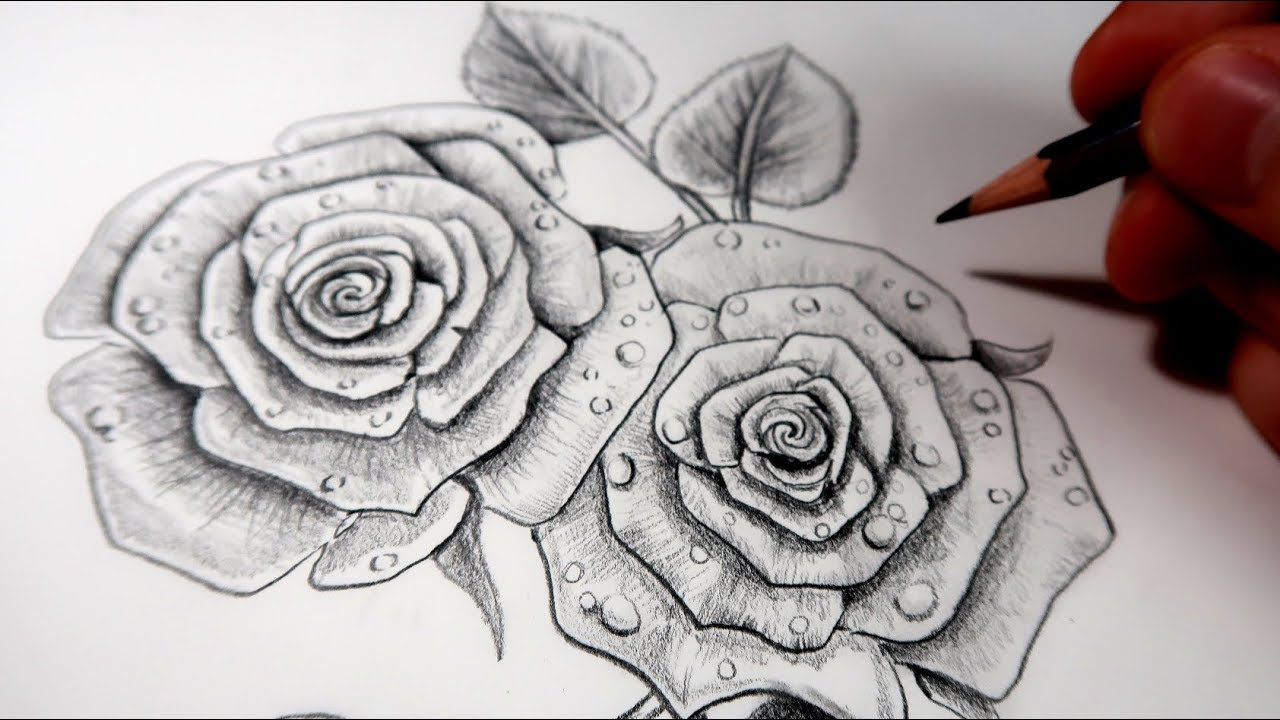 Comment Dessiner Des Roses Au Crayon Tutoriel Youtube