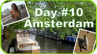 День 10: из Брюсселя в АМСТЕРДАМ || Прогулка по городу моей мечты!