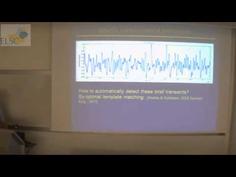 ELSC Seminar: Moshe Abeles