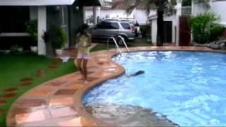 A Jumping Beagle Swim