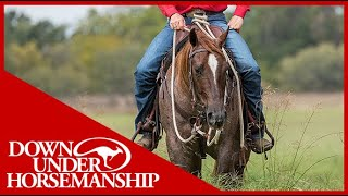 Clinton Anderson: How to Stop a Horse From Eating on the Trail - Downunder Horsemanship