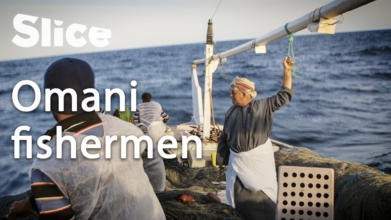 Traditional dhows in the Gulf of Oman | SLICE