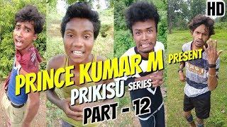 Gambar cover PRINCE KUMAR M | PRIKISU Series | Part 12 | Vigo Video Comedy