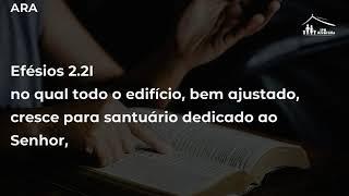 Que tempo é esse? - (Eclesiastes 3:1-8) - Rev. Márcio Barzotto - IPB Alvorada - 30/08/20