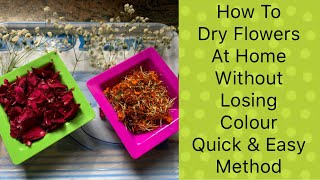 How To Dry Rose Petals | How To Dry/Preserve Flowers | By Catchy Fusion