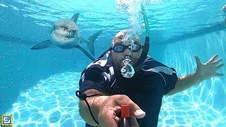 Underwater Breathing Device!!