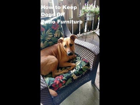 Keep Your Patio Chair Sofa Cushions
