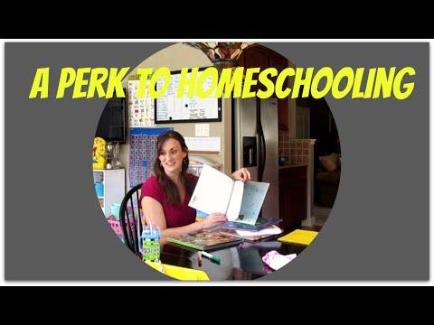 A Perk to Homeschooling {Daily Vlog}
