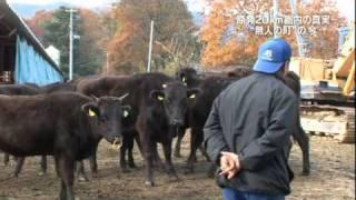 20111218a福島第一原発20km圏内の光景『特命報道記者X 2011』