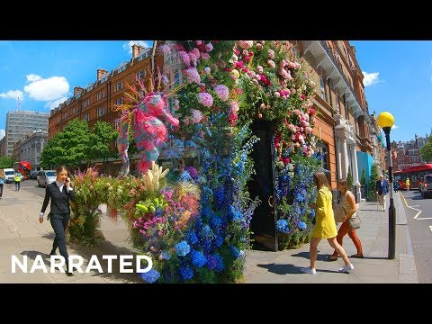⁴ᴷ Walking London's Chelsea In Bloom (Narrated) - 'Under The Sea' Themed Floral Displays