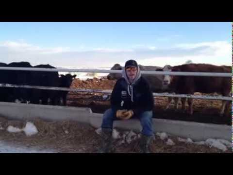 Cody Tesch video blog 2/11/2014