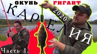 КАРЕЛИЯ 2020 рыбалка осенью Не пошел в школу из за дикого клева Окунь гигант Часть 1