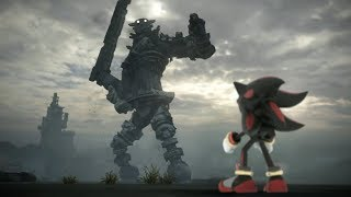 Shadow the Hedgehog of the Colossus