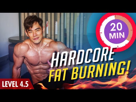 [Level 4+] 20 Minute Hardcore Fat-burning/Cardio!