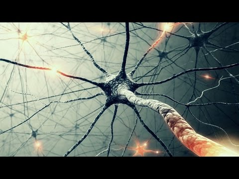 Shocking Discovery About the Human Brain Will Give You Goosebumps!