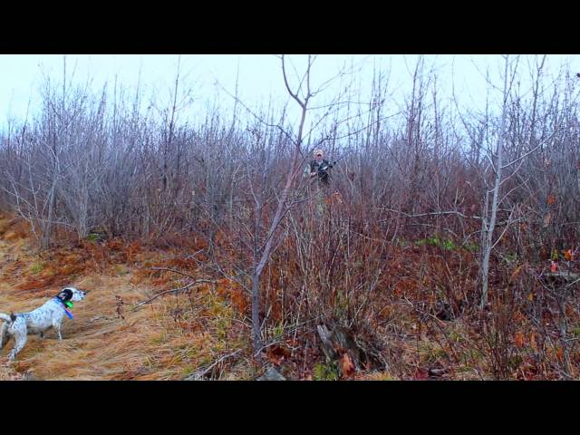 Grouse Hunting - Ruffed Grouse Society - A Day Afield - HD