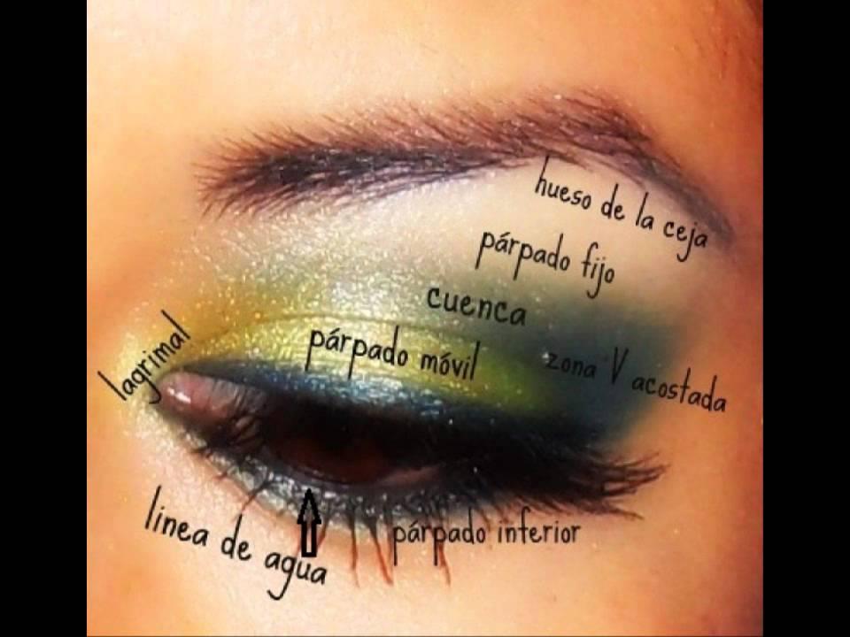 Como aplicar las sombras en cada zona del ojo
