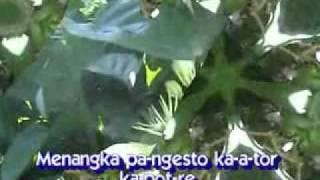 lagu madura - KEMBHANG MALATE (rita).flv