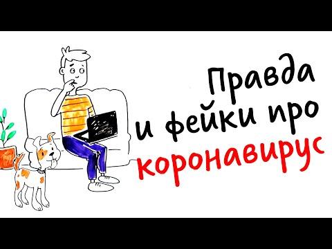 Правда и фейки про КОРОНАВИРУС — Научпок