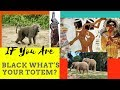 if You are Black Where Is YOUR TOTEM?