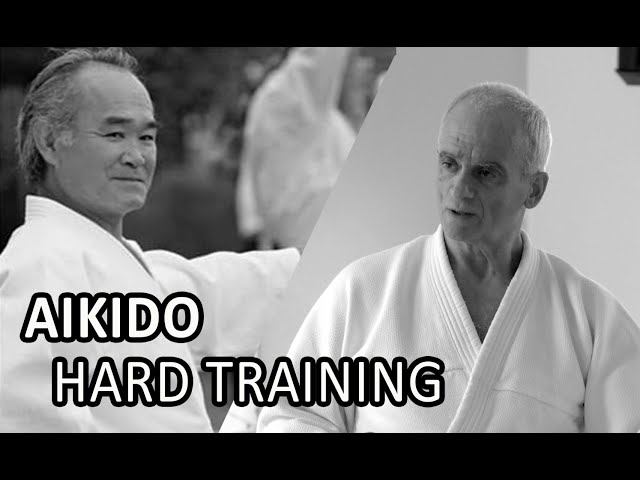 AIkido Training, Chiba Sensei and Terry Ezra Sensei