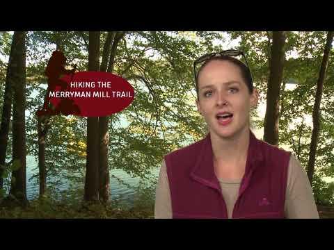 Take a Hike on the Merryman Mill Trail