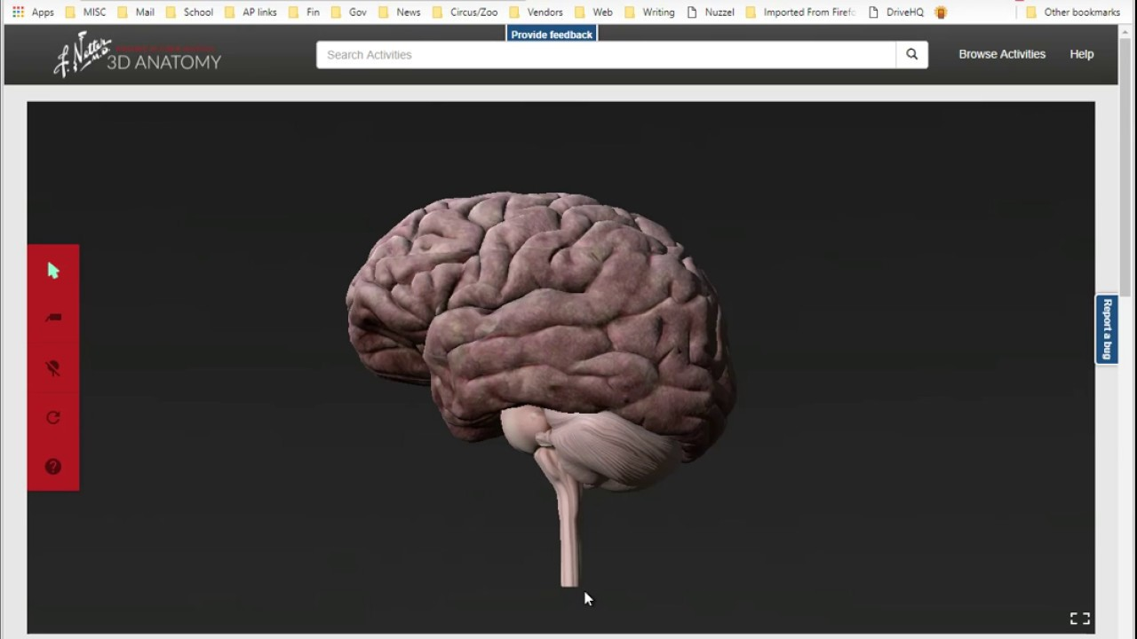 Getting into Netters 3D Anatomy - YouTube