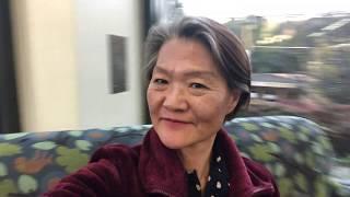 Tourist voiceover - Belmont library asmr thumbnail