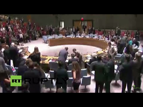 LIVE: UN Security Council to vote on MH17 tribunal