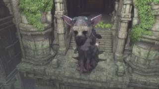 The Last Guardian #8 /// Trico Saves Me