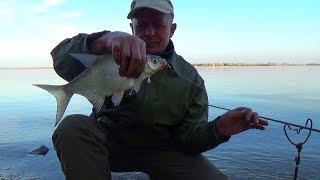 Рыбалка поздней осенью фидером на водохранилище Подлещик плотва